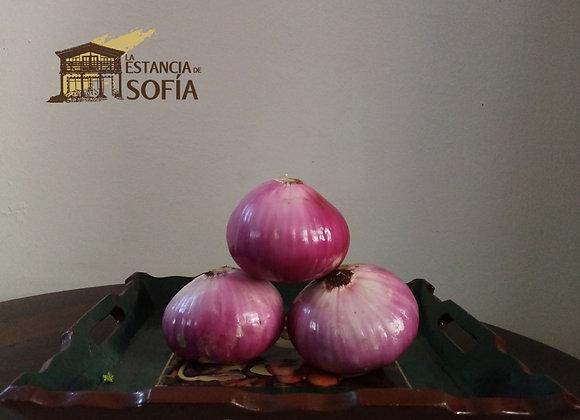 Cebollas Paiteña / Porción