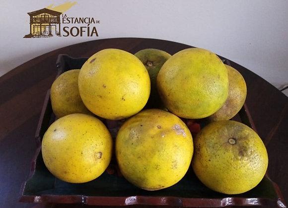 Naranja / Porción
