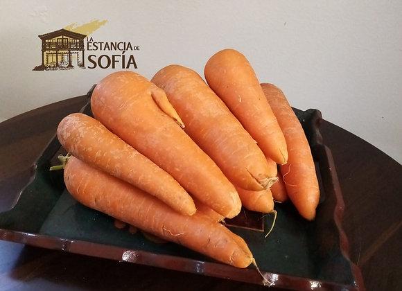 Zanahoria / 4.7 Libras