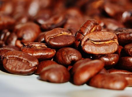 Marc de café au jardin : une fausse bonne idée !