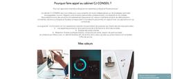 Site Gestion de patrimoine - CJ Conseil