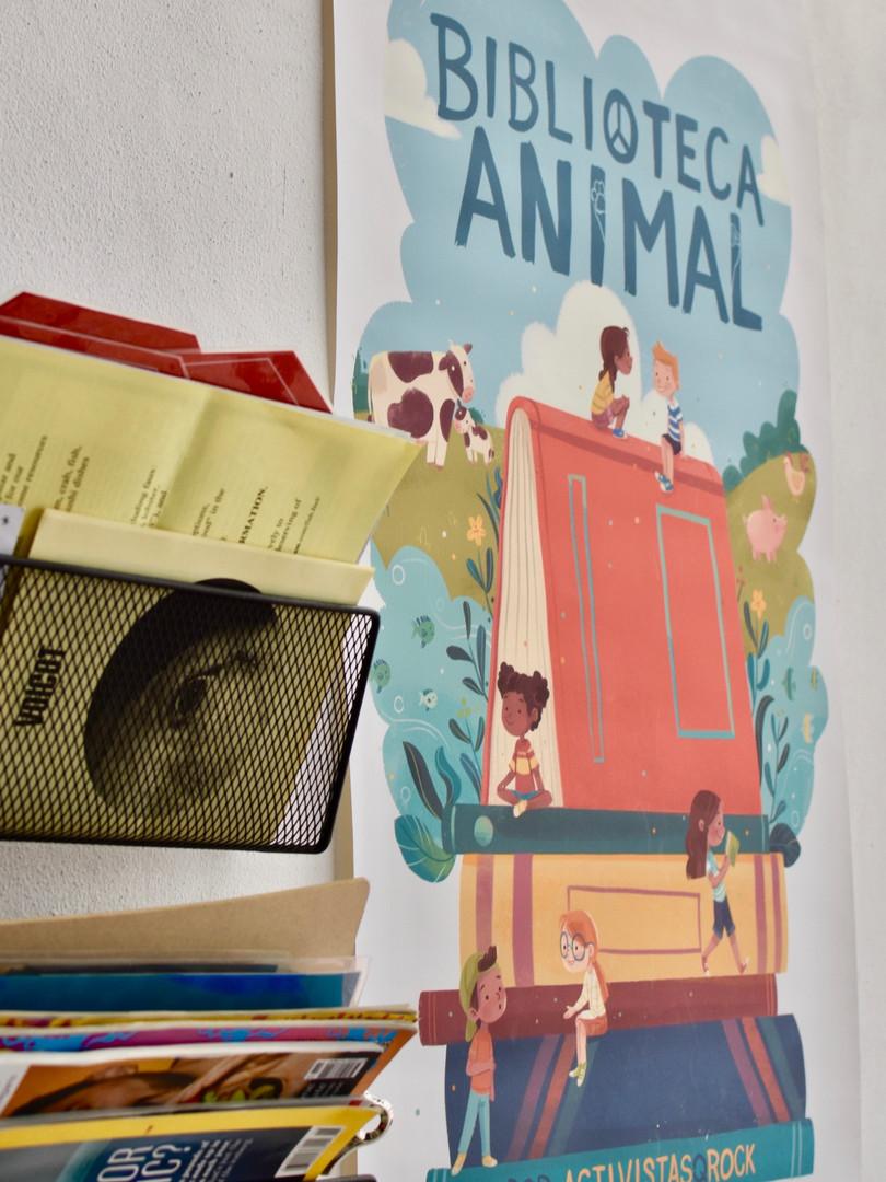 Casa Animal   4