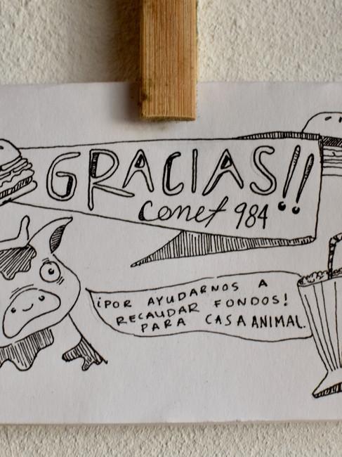 Casa Animal | 16