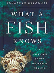 What a Fish Knows: The Inner Lives of Our Underwater Cousins