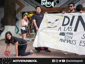 Manifestación pacífica en la Quinta Avenida, Playa del Carmen.