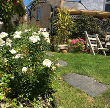 Garden - Hamilton Lodge Fishguard Pembrokeshire - Holiday Home Wales