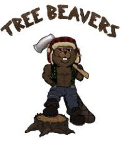 tree beavers