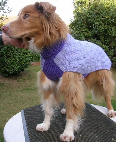 Slipover style made to measure knitted dog coat