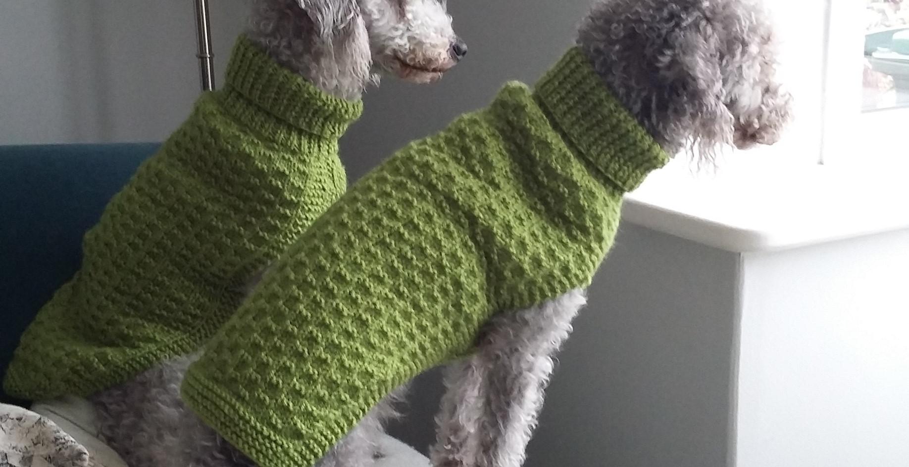 dog coats 526 and 527 on DOLLY & TATTY