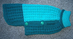small dog coat sea green teal