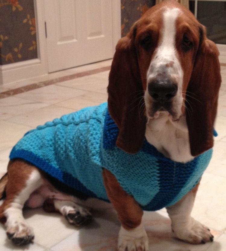 dog coat 285 Hagrid