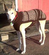 Sandie in coat 160