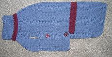 small blue gret dog coat