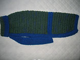 large dog coat green/blue