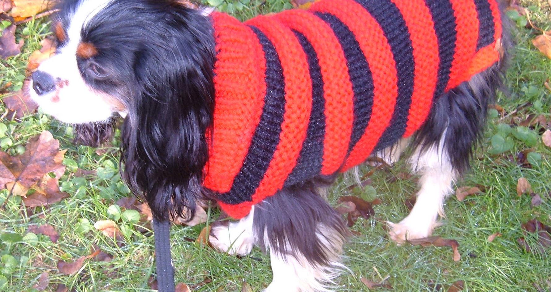 Bobby in his coat  Nov 07