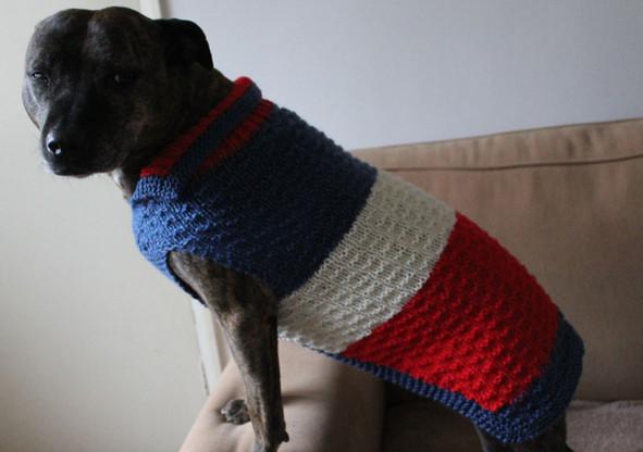 Dog coat 295 Mollie