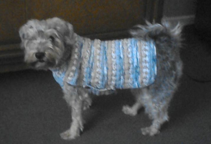coat 509 on Riley