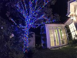 Home Christmas Lighting