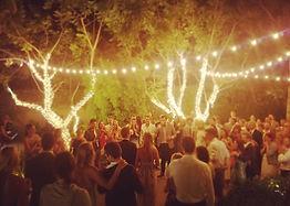Wedding Twinkle Lights