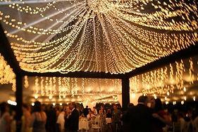 Wedding Twinkle Cannopy Lights