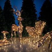 grapevine-outdoor-animals-christmas-2462