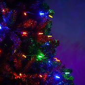 M5-Multi-LED-String-Lights-Tree-3842.jpg