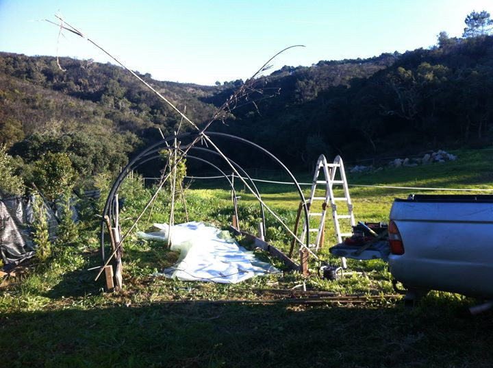 Facebook - After putting up the hoops (plastic water tubing), supported by my ol