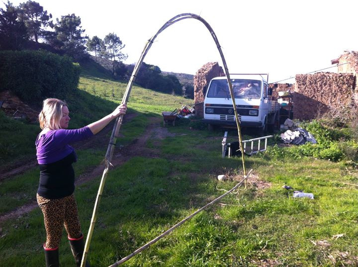 Facebook - We tried to make the Cane into a hoop, but soon after this the hoop s