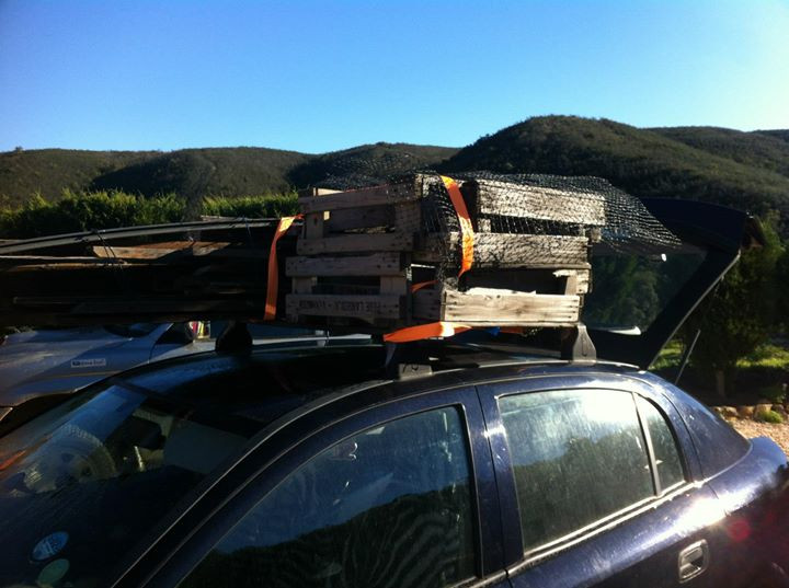 Facebook - I found a whole lot of wood abandoned on the side of the road next to