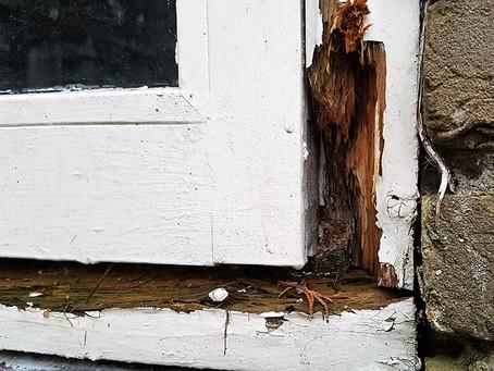Welke producten kun je het best gebruiken voor houtrot reparatie?