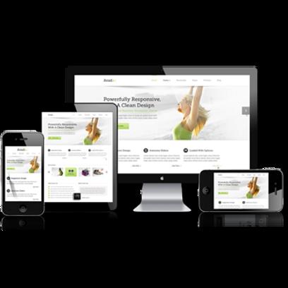 Professional-Responsive-Website-Design-S