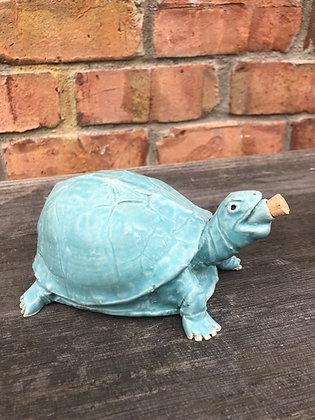 Turtle, Light Teal