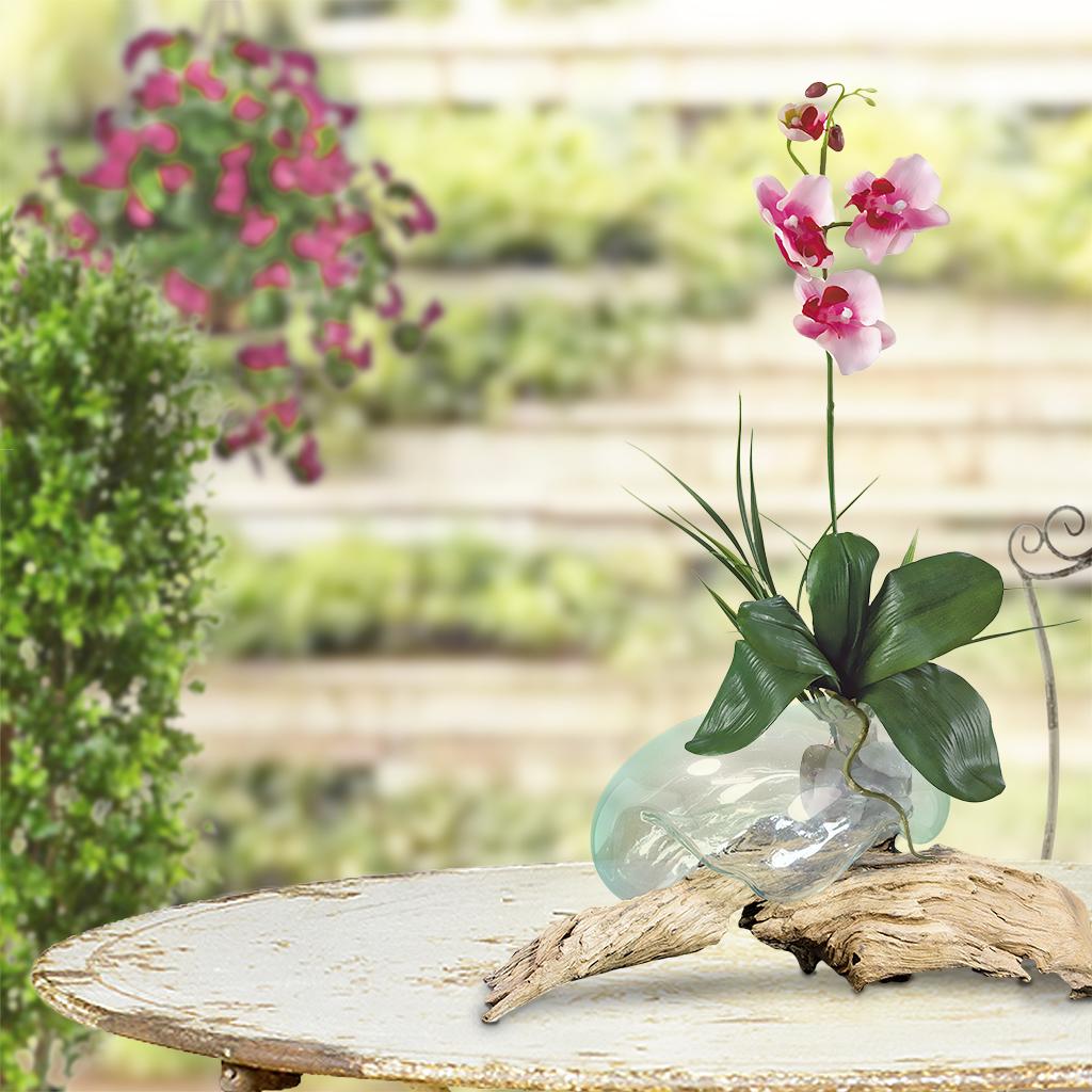 Wurzelholz mit Orchidee