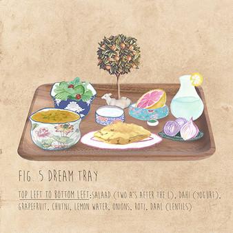 Dream Tray 2016