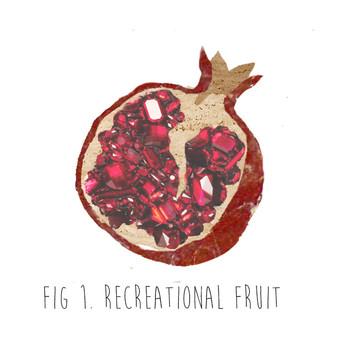 Recreational Fruit 2016