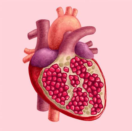 Pomegranate Heart 2019