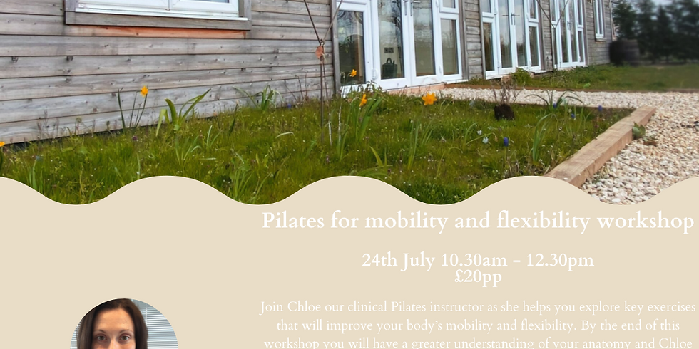 Pilates for mobility and flexibility workshop