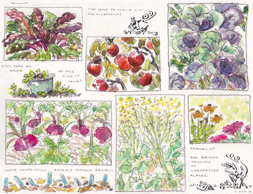10.11.13Allotments-in-Autumn-Drab-or-Bright-.jpg