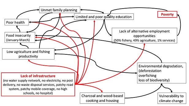 Interlinks between causes and effects of
