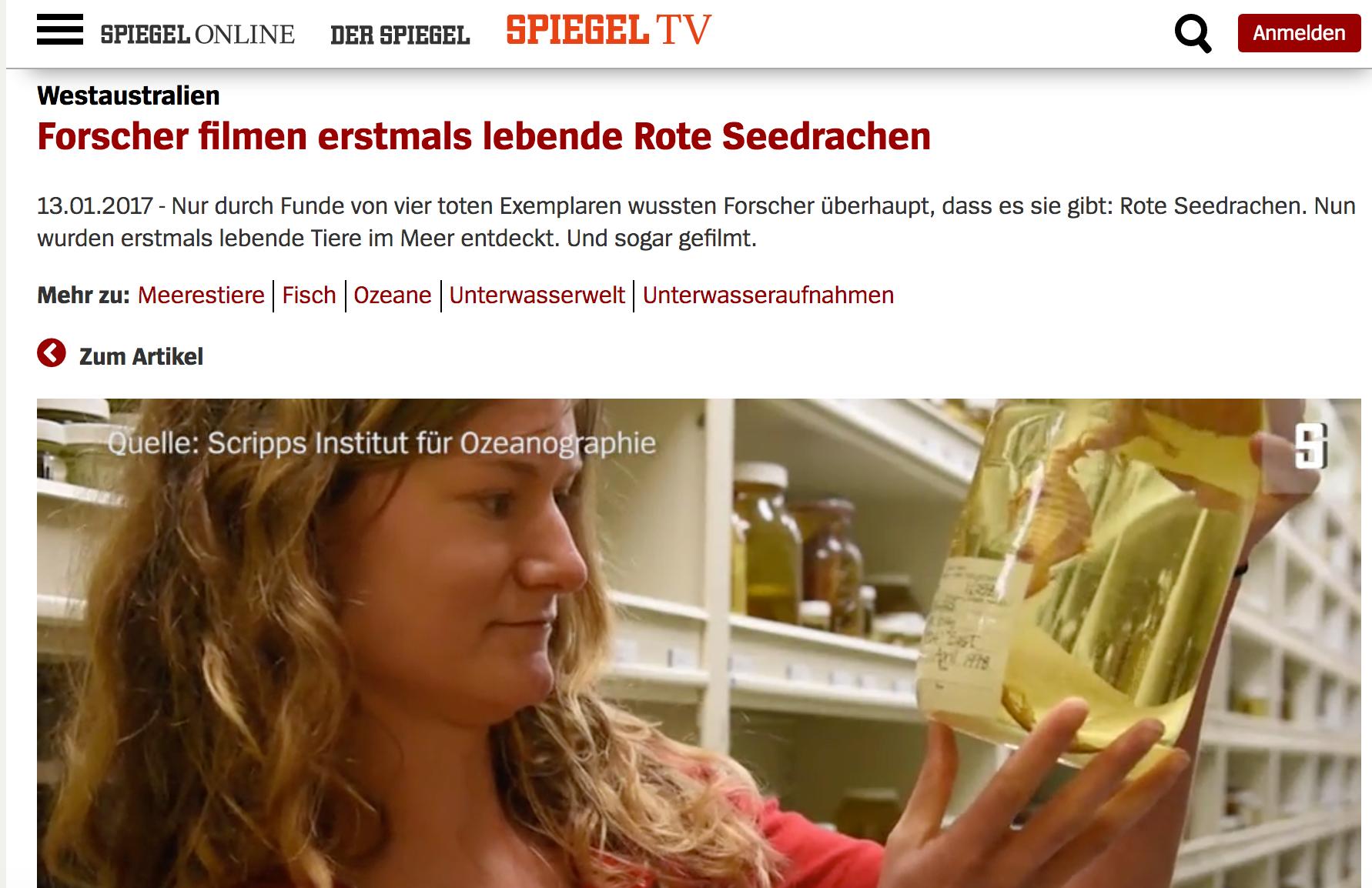 SpiegelOnline