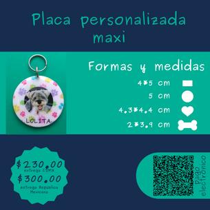 PLACA-MAXI-ICNIUH.png