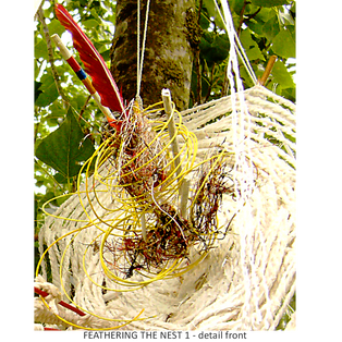FEATHERING THE NEST 1 tree sculpture - close-up front centre