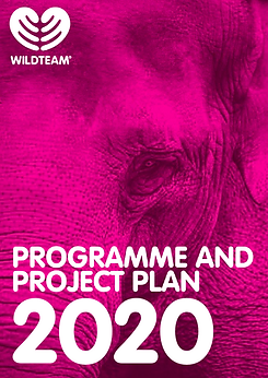 WildTeam 2020 Programme and Project plan