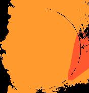 WildTeam Orange Sun