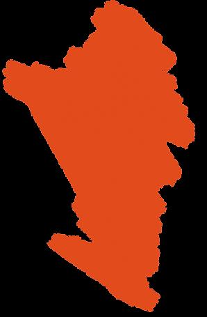 WildTeam Orange Splat