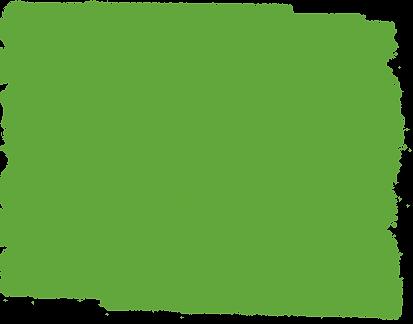 WildTeam GreenSplat