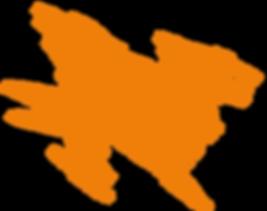 WildTeam OrangeSplat
