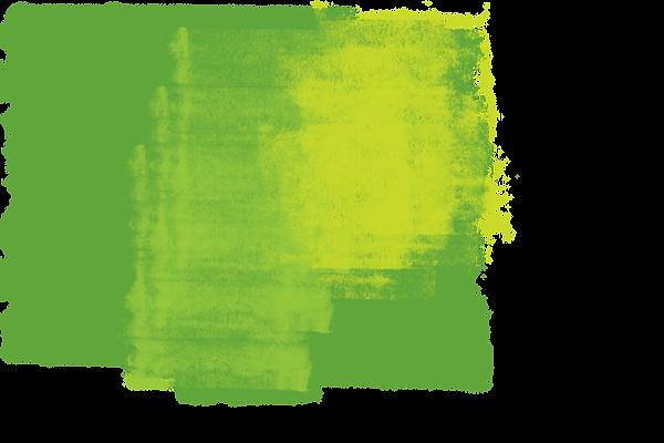 WildTeamSplat-roller-green-combo-1.png