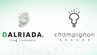 Dalriada Welcomes its Newest Client, Champignon Brands