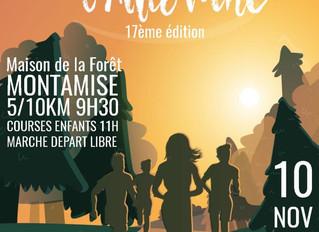 Course de l'automne - Montamisé - 10/11/19
